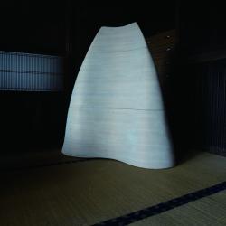 http://www.maikosugano.com/files/gimgs/th-21_SUGANOmaikoPhotowww.jpg